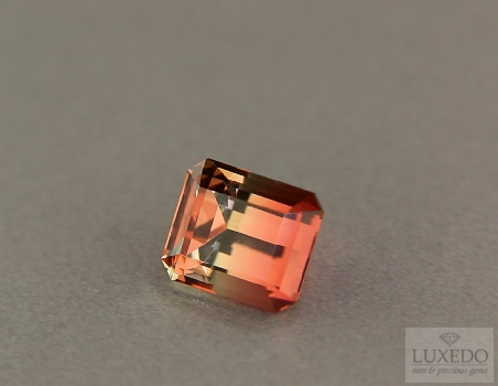 Octagonal cut two-coloured tourmaline, 3.69 ct