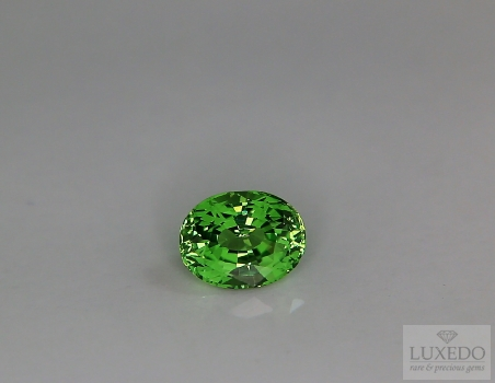 Tsavorite garnet, oval cut, 1.64 ct