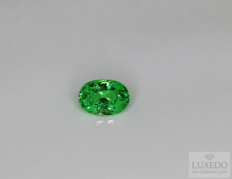 Tsavorite Garnet, oval cut, 1.13 ct